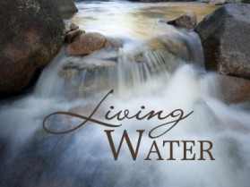 living-water-naes-nest