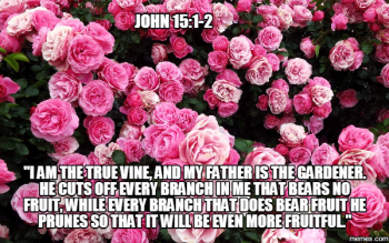 Pruning Our Branches – Seeking Passionate Prayer in