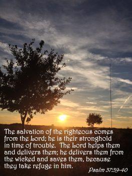 psalm-37-39-40