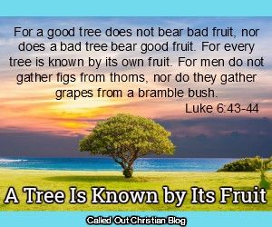 A Tree Is Known By Its Fruit – Seeking Passionate Prayer in